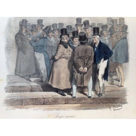 Gustave DORE, la menagerie Parisienne 1861,Loups cerviers