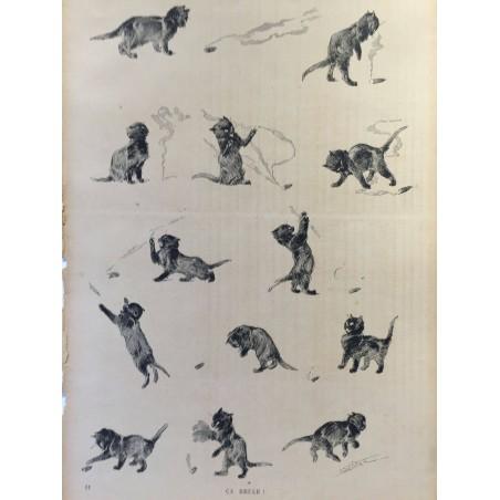 STEINLEN Théophile Alexandre 1859-1923, des chats 1897
