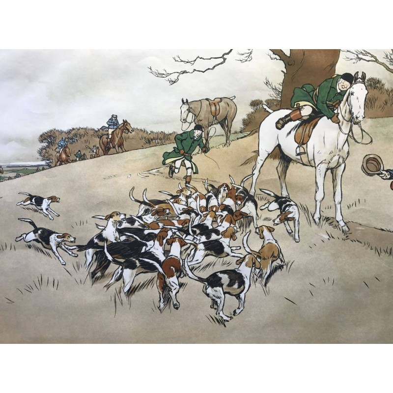 The Harefield Harriers, who Whoop, Cecil Aldin 1908