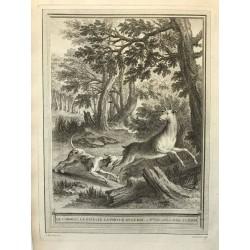 Oudry, Fables de la Fontaine, 1755, Le corbeau, la gazelle, la tortue et le rat