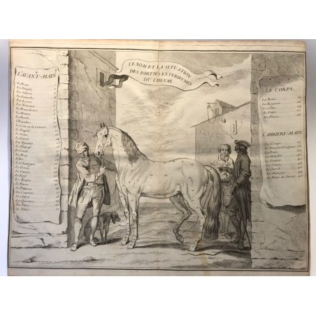 François Robichon de la Guerinière, l' école de cavalerie 1750