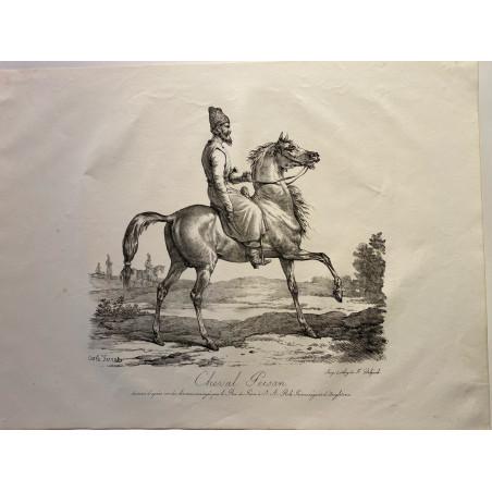Carle Vernet, la grande suite de chevaux, 1820.cheval Persan.