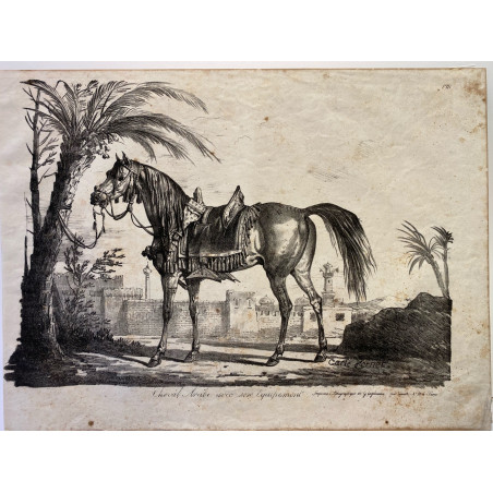 Carle Vernet, la grande suite de chevaux, 1820. Cheval Arabe.