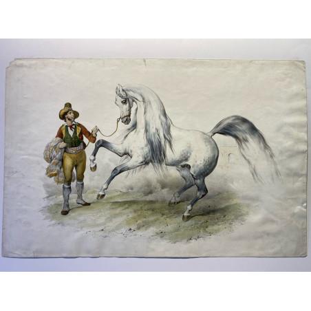 Victor Adam, cheval Espagnol, vers 1855.