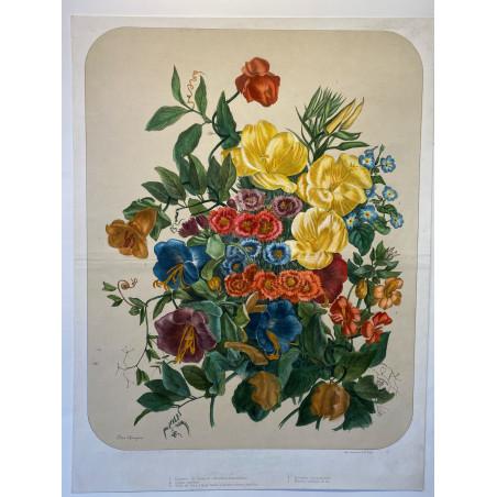 Bouquet de fleurs, Elisa CHAMPIN pour Vilmorin et Andrieux, vers 1850-1860.