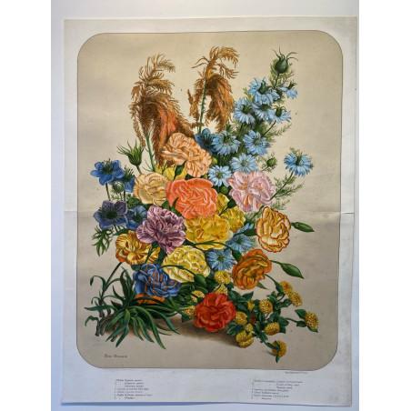 Bouquet de fleurs, Elisa CHAMPIN pour Vilmorin et Andrieux, vers 1850-1860