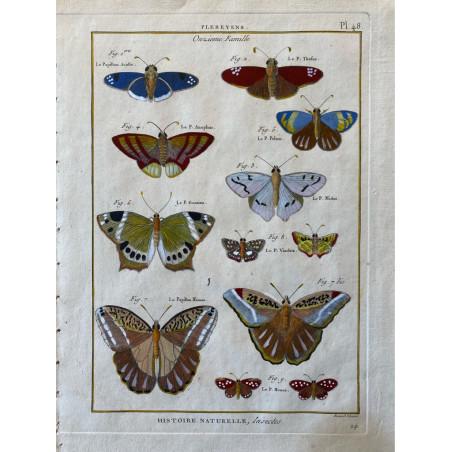 Papillons, Plebeyens, Encyclopédie Diderot et d'Alembert, 1770
