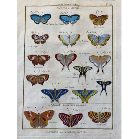 Papillons, Plebeyens nobles, Encyclopédie Diderot et d'Alembert, 1770