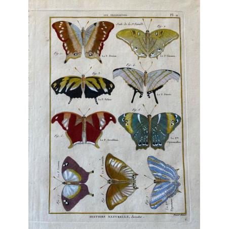 Papillons, Les argonautes , Encyclopédie Diderot et d'Alembert, 1770